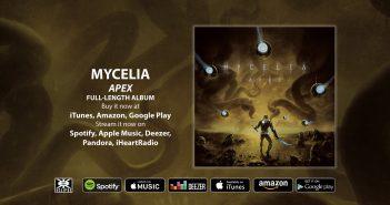 Mycelia - Apex