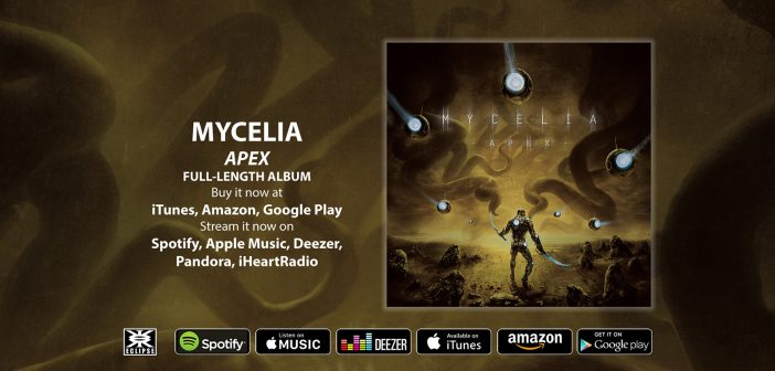 Mycelia - Apex