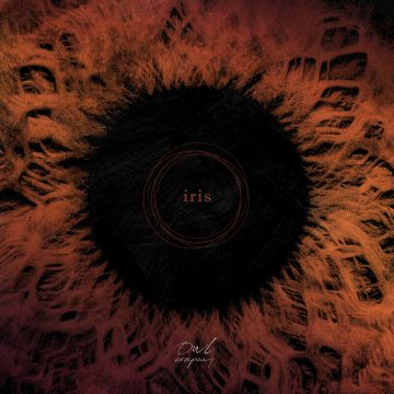 Iris by Owl Company album cover art