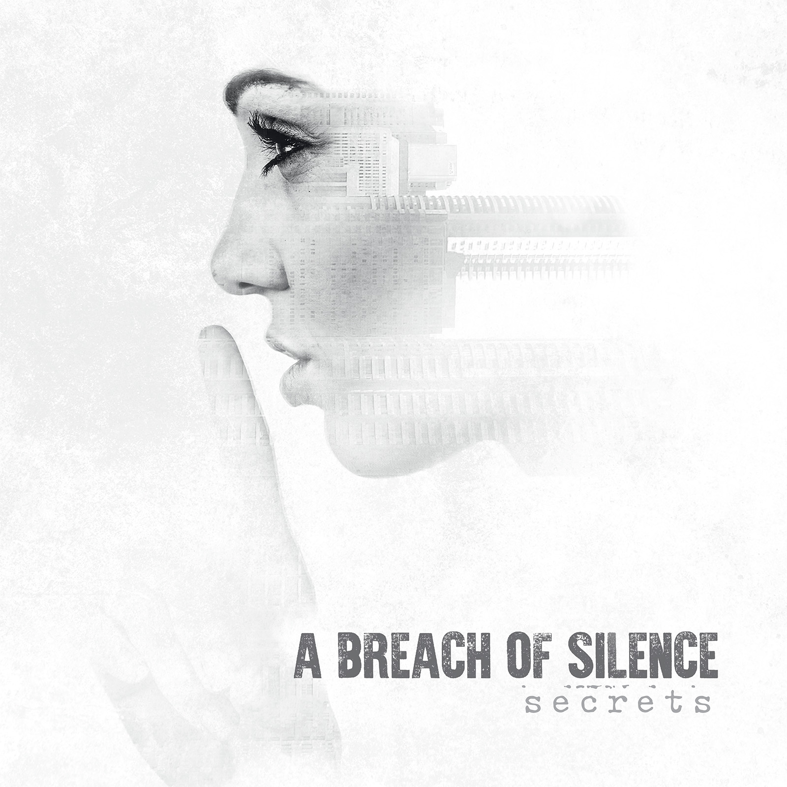 Image result for album art A Breach Of Silence: Secrets